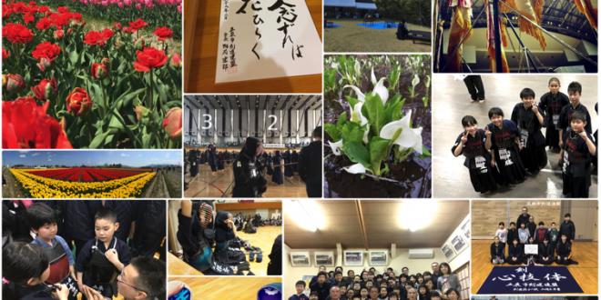新潟県五泉市の剣道情報を発信しています!